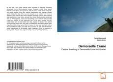 Обложка Demoiselle Crane