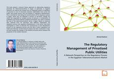 Bookcover of The Regulatory Management of Privatised Public Utilities