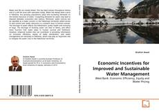 Economic Incentives for Improved and Sustainable Water Management kitap kapağı