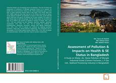 Bookcover of Assessment of Pollution & Impacts on Health & SE Status in  Bangladesh