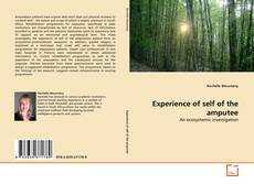 Bookcover of Experience of self of the amputee