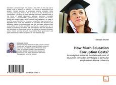 Bookcover of How Much Education Corruption Costs?