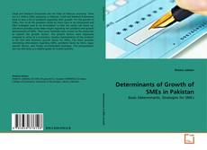 Bookcover of Determinants of Growth of SMEs in Pakistan