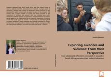 Bookcover of Exploring Juveniles and Violence: From their Perspective