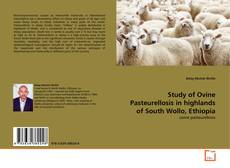 Bookcover of Study of Ovine Pasteurellosis in highlands of South Wollo, Ethiopia