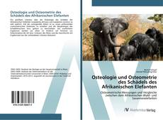 Buchcover von Osteologie und Osteometrie des Schädels des Afrikanischen Elefanten