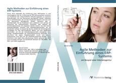 Bookcover of Agile Methoden zur Einführung eines ERP-Systems