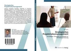 Strategisches Projektrisikomanagement的封面