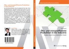 Öko- und energieeffiziente Produktion in der Industrie kitap kapağı