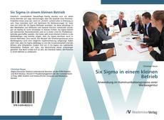 Six Sigma in einem kleinen Betrieb的封面