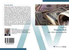 Bookcover of Transfer Risk