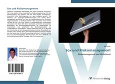 Bookcover of Sox und Risikomanagement