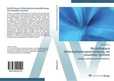 Buchcover von Nichtlineare Informationsverarbeitung im visuellen System