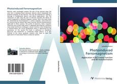 Bookcover of Photoinduced Ferromagnetism