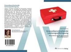 Grenzüberschreitende Leistungserbringung kitap kapağı