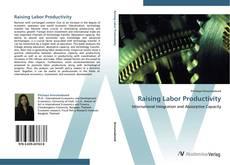Bookcover of Raising Labor Productivity