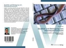 Bookcover of Qualität und Reinigung von Datenbankinstanzen
