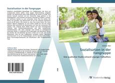 Bookcover of Sozialisation in der Fangruppe