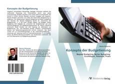 Bookcover of Konzepte der Budgetierung