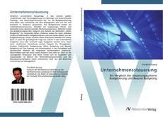 Unternehmenssteuerung kitap kapağı