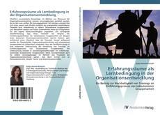 Bookcover of Erfahrungsräume als Lernbedingung in der Organisationsentwicklung