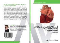 Copertina di mTOR activates PKB/Akt and PKC-α in Cardiac Hypertrophy