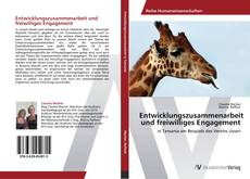Entwicklungszusammenarbeit und freiwilliges Engagement kitap kapağı