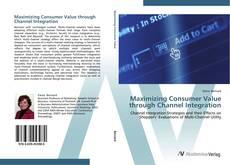 Maximizing Consumer Value through Channel Integration的封面