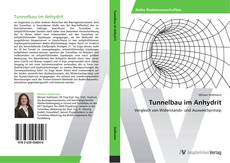 Bookcover of Tunnelbau im Anhydrit