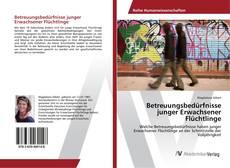 Bookcover of Betreuungsbedürfnisse junger Erwachsener Flüchtlinge