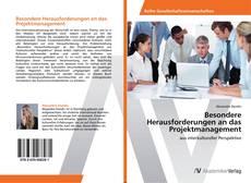Capa do livro de Besondere Herausforderungen an das Projektmanagement