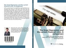 Bookcover of The Great Depression and the current financial crisis: A comparison