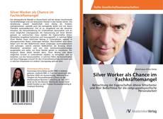 Capa do livro de Silver Worker als Chance im Fachkräftemangel