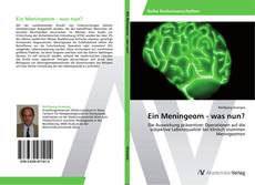 Buchcover von Ein Meningeom - was nun?