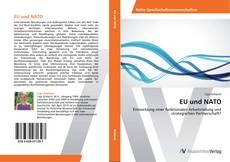 Portada del libro de EU und NATO