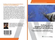 Buchcover von Einfluss einzeln eingemischter Birken in Fichten auf die Strahlung