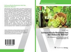Borítókép a  Schwarzfäule-Resistenz bei der Rebsorte 'Börner' - hoz