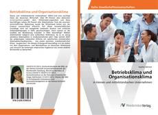 Betriebsklima und Organisationsklima kitap kapağı