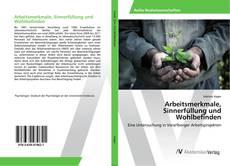 Buchcover von Arbeitsmerkmale, Sinnerfüllung und Wohlbefinden