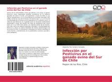 Bookcover of Infección por Pestivirus en el ganado ovino del Sur de Chile