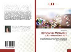 Обложка Identification Moléculaire à Base Des Gènes GTF