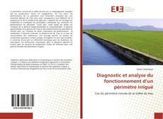 Diagnostic et analyse du fonctionnement d'un périmètre irrigué的封面