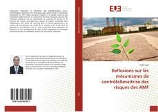 Обложка Reflexions sur les mécanismes de contrôle&maitrise des risques des AMF