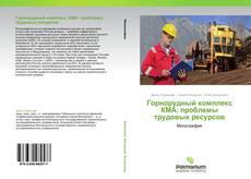 Горнорудный комплекс КМА: проблемы трудовых ресурсов的封面
