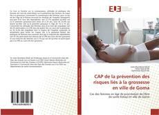 Portada del libro de CAP de la prévention des risques liés à la grossesse en ville de Goma