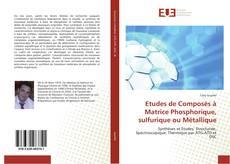 Capa do livro de Etudes de Composés à Matrice Phosphorique, sulfurique ou Métallique