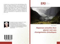Bookcover of Réponses actuelles d'un glacier noir aux changements climatiques