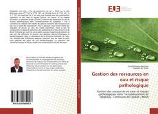 Portada del libro de Gestion des ressources en eau et risque pathologique