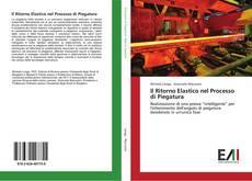 Buchcover von Il Ritorno Elastico nel Processo di Piegatura
