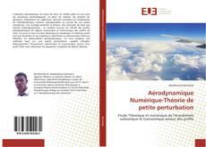 Capa do livro de Aérodynamique Numérique-Théorie de petite perturbation